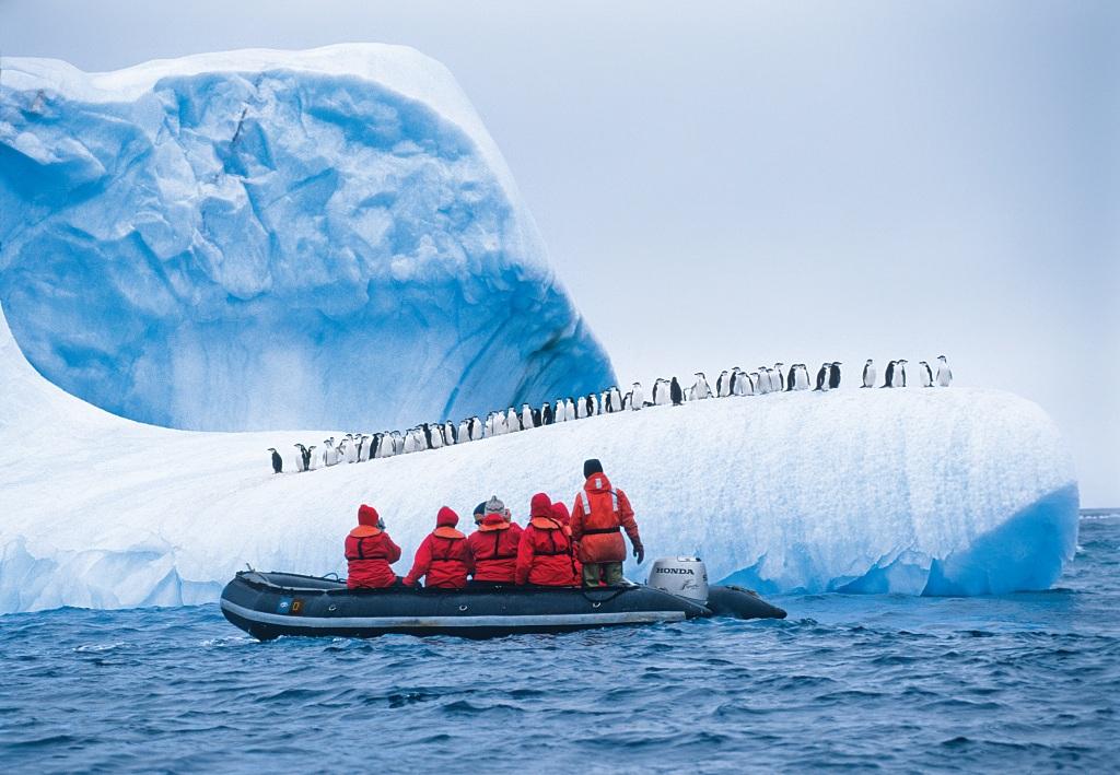 bruvik arctic ocean